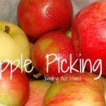 Apple Picking & Classic Apple Crisp