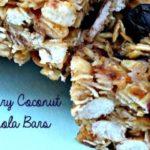 Blueberry Coconut Granola Bars