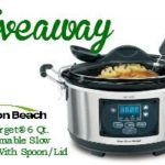 Slow Cooker Honey Chicken Recipe & #SlowCookerMeals Giveaway