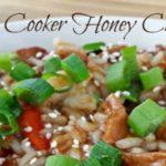 Slow Cooker Honey Chicken Recipe & #SlowCookerMeals Giveaway