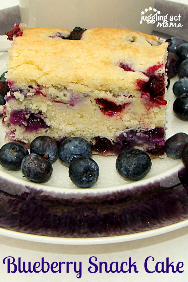 Delicious Blueberry Snack Cake