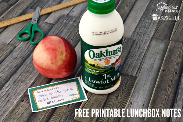 FREE PRINTABLE BACK TO SCHOOL LUNCHBOX NOTES