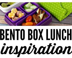 Pack a Great Lunch with Cool Gear Review & Giveaway feature