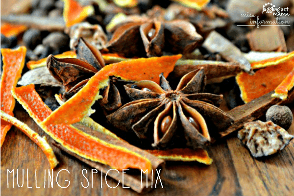 HOMEMADE MULLING SPICE MIX - perfect for Fall