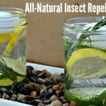 All-Natural Insect Repellent Jars