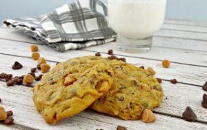 Pumpkin Butterscotch Chocolate Chip Cookies